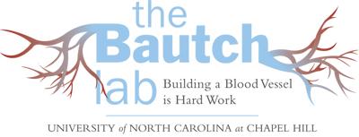 The Bautch Lab